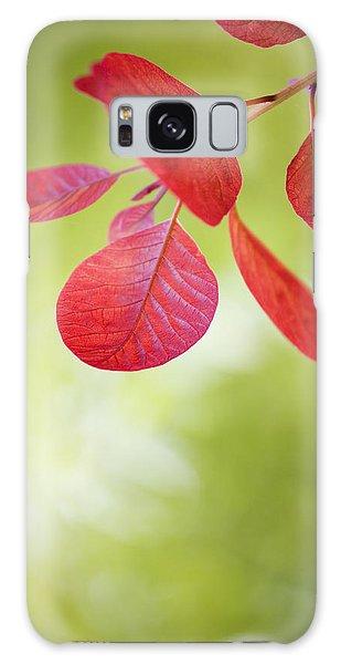 Red Leaf Galaxy Case