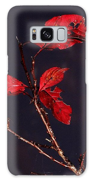 Red Leaves And Fading Moon Galaxy Case
