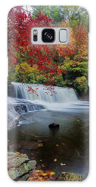 Red Leaves In Dupoint Park Hooker Falls Galaxy Case