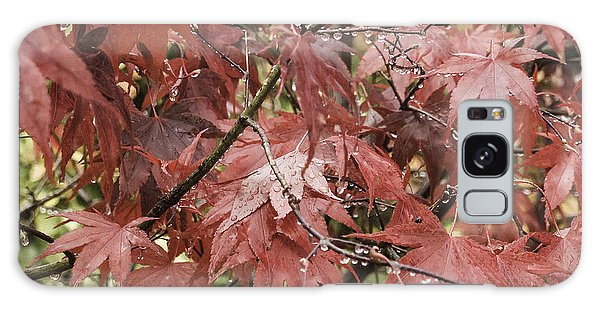 Red Leaves In Fall Galaxy Case