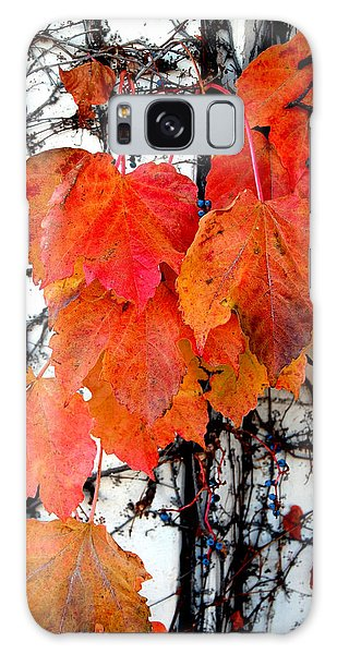 Red Leaves Of Fall Galaxy Case