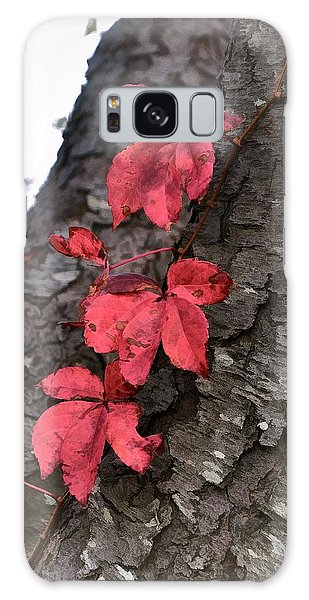 Red Leaves On Bark Galaxy Case