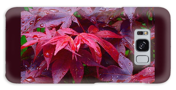 Red Maple After Rain Galaxy Case by Ann Horn