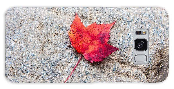Red Maple Leaf On Granite Stone In Horizontal Format Galaxy Case by Karen Stephenson