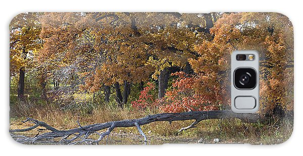 Red Oaks On The Shore Galaxy Case
