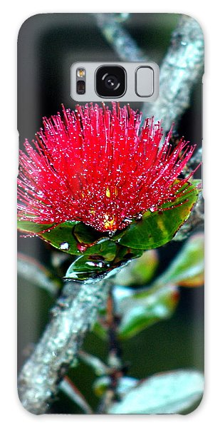 Red Ohia Lehua In Hawaii Volcano Mist Galaxy Case