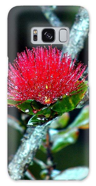 Red Ohia Lehua In Hawaii Volcano Mist Galaxy Case by Lehua Pekelo-Stearns