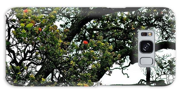 Red Ohia Lehua Tree Galaxy Case by Lehua Pekelo-Stearns