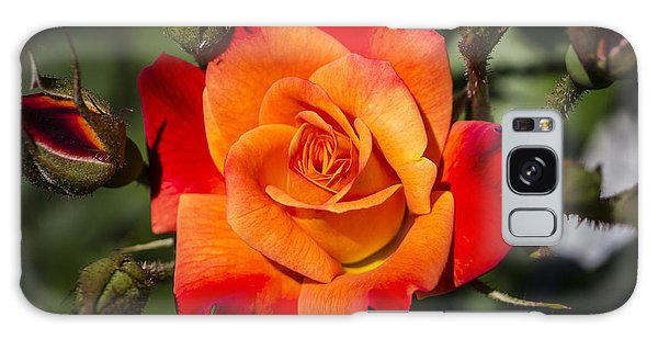 Red-orange Rose Galaxy Case