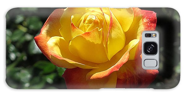 Red Orange Rose Galaxy Case