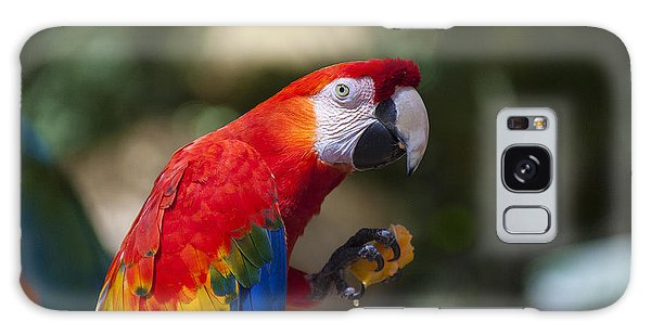 Red Parrot  Galaxy S8 Case