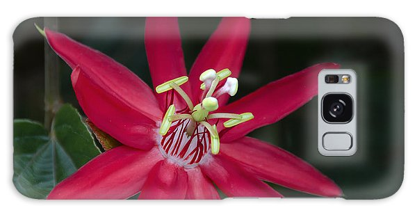 Red Passion Flower Galaxy Case