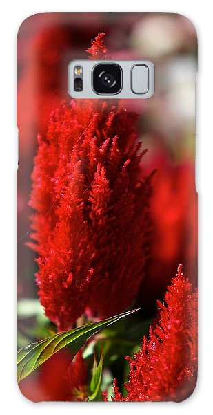 Red Plant Galaxy Case