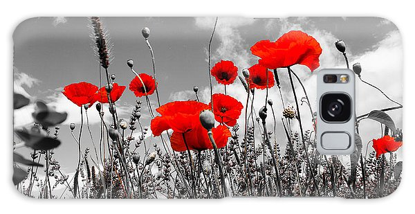 Red Poppies On Black And White Background Galaxy Case by Dany Lison