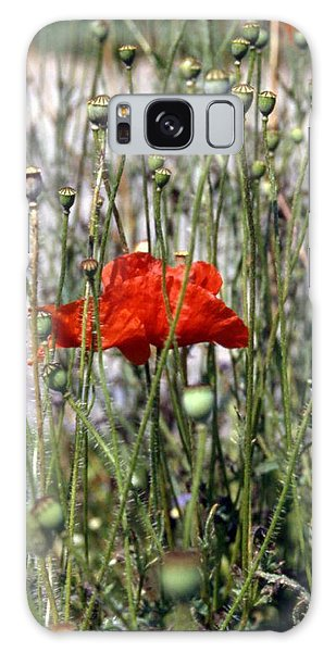Red Poppy And Buds Galaxy Case