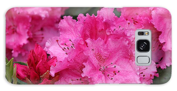 Red Rhododendrons Galaxy Case