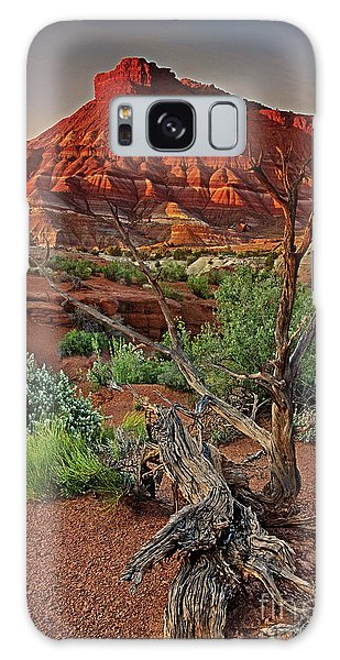 Red Rock Butte And Juniper Snag Paria Canyon Utah Galaxy Case