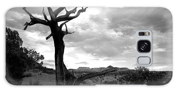 Red Rocks Dead Tree Galaxy Case