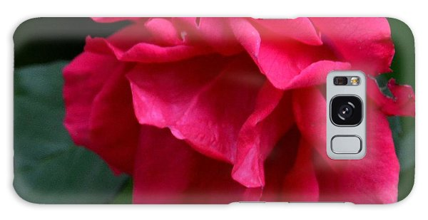 Red Rose 2013 Galaxy Case by Maria Urso