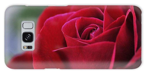 Red Rose Close 1 Galaxy Case