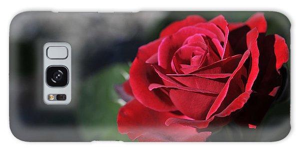 Red Rose Dark Galaxy Case