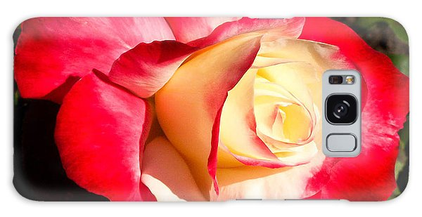 Red Rose Galaxy Case by Margaret Buchanan