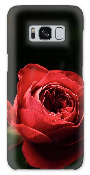Hybrid Galaxy Case - Red Rose (rosa Hybrid) by Maria Mosolova/science Photo Library