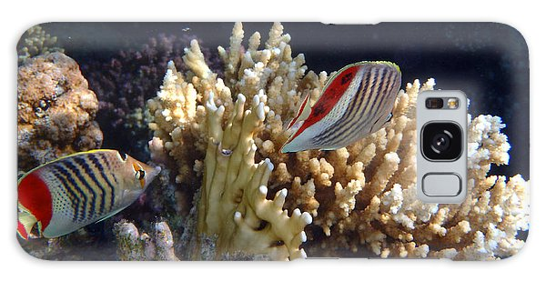 Red Sea Beauty 2 Galaxy Case