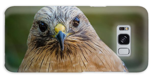 Red Shouldered Hawk Galaxy Case by Linda Villers