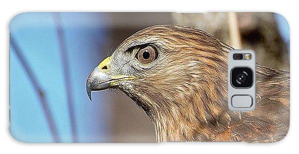 Red-shouldered Hawk Galaxy Case