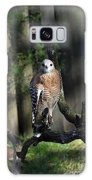 Red Shouldered-hawk Galaxy Case by Robert Meanor