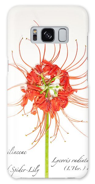Red Spider-lily Galaxy Case