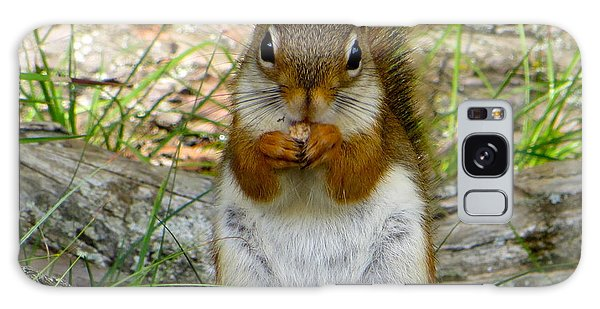 Red Squirrel Eating Peanut Butter And Jelly Galaxy Case