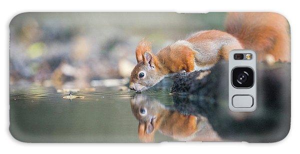 Furry Galaxy S8 Case - Red Squirrel by Erik Willaert