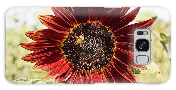 Red Sunflower And Bee Galaxy Case