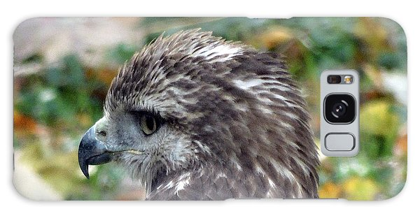 Red Tail Hawk Head Shot Galaxy Case