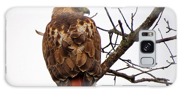 Red Tail Hawk In Winter Galaxy Case