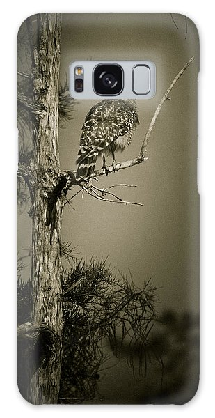 Red Tail Hawk On Loop Road Galaxy Case