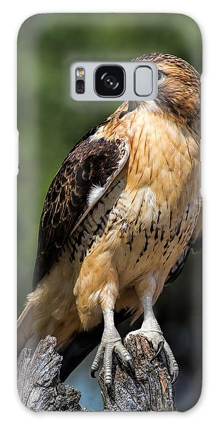 Red Tail Hawk Portrait Galaxy Case