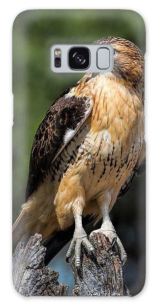 Red Tail Hawk Portrait Galaxy Case by Dale Kincaid