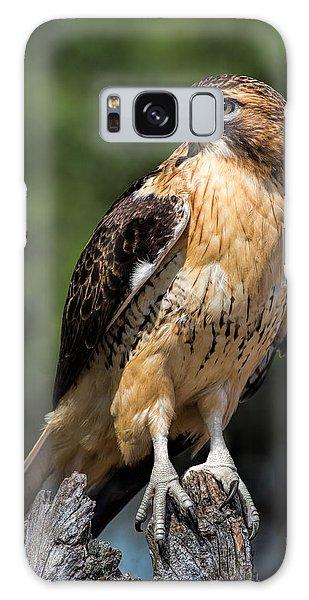 Red Tail Hawk Portrait Galaxy Case