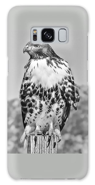 Red Tail Hawk Youth Black And White Galaxy Case