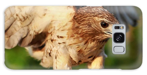 Red Tailed Hawk Hunting Galaxy Case