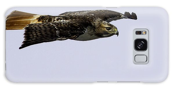 Red-tailed Hawk In Flight 2 Galaxy Case