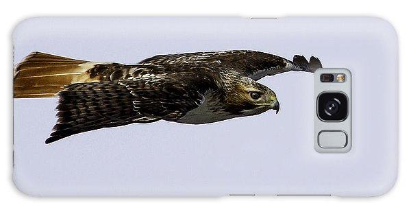 Red-tailed Hawk In Flight 2 Galaxy Case