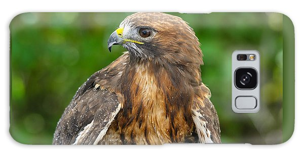 Red-tailed Hawk Close-up Galaxy Case
