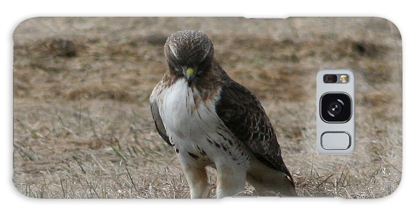 Red Tailed Hawk Galaxy Case by Neal Eslinger