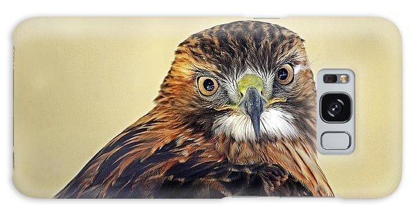 Red Tailed Hawk Portrait #2 Galaxy Case