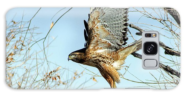 Red Tailed Hawk Sequence #2 Galaxy Case by Stephen  Johnson