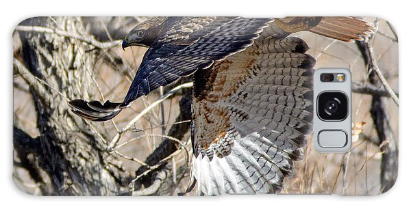 Red Tailed Hawk Sequence #4 Galaxy Case by Stephen  Johnson